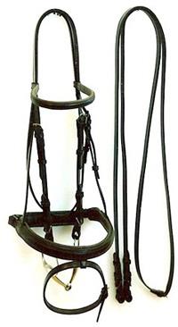 Saddle Maker, Harness Maker, Custom Saddles, Custom Bridles
